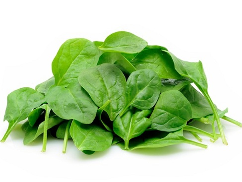 Young spinach leaves in isolated white background
